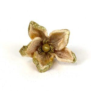 Magnolia oro cm 13